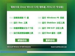 雨林木风Ghost Win10 X32 完美装机版2016v10(自动激活)