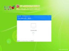 新萝卜家园Windows10 好用2021新年春节版32位